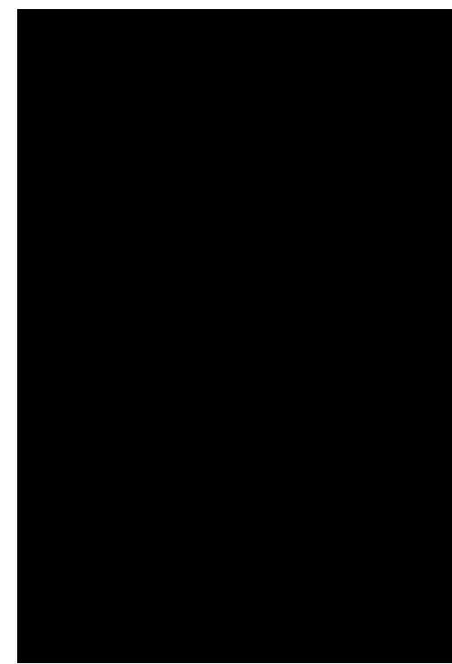 Фоллаут раскраска